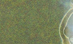 Light Green Static Grass