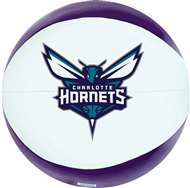 Charlotte Hornets 8 inch Softee Basketball