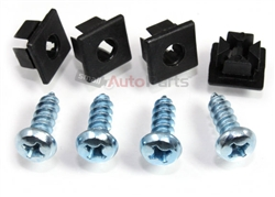 Chrome Metal License Plate Screws