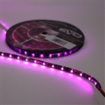 5M Purple/Fuchsia UltraBrights LED Strip Roll
