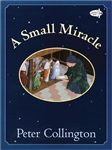 Small Miracle, A
