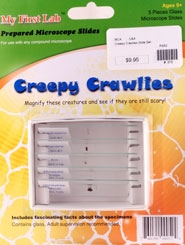 Creepy Crawlies Slide Set