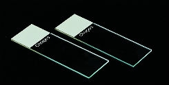 Charged Green Microscope Slides - Case of 1440 Slides