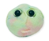 Giant Microbes - Stem Cell