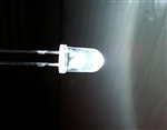 Set of 5 5mm White LEDs