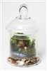 The Water's Fine Readymade Terrarium