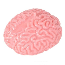 Brain Splat Ball
