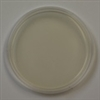 Corn Meal Agar 10 Plates