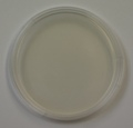Standard Methods Agar with Lecithin and Polysorbate 10 prepared plates