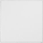 231 PLAIN WHITE 1'x1' (40 pcs) ARMSTRONG CEILING TILE #231
