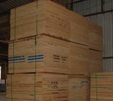 3 4 X4x8 Cd Syp T G Plywood