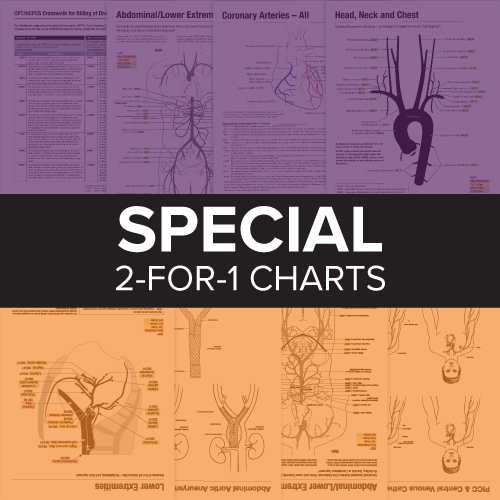 2020 IR and Cardiology Coding Charts: 2-for-1 Pricing