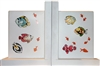 Tropical Fish Book ends