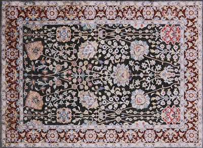 Pure Silk With Oxidized Wool Hand Knotted Area Rug