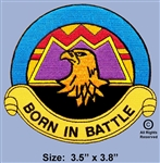 "16TH COMBAT AVIATION GROUP ""BORN IN BATTLE""  PATCH"