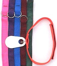 Adult Breakaway Collars