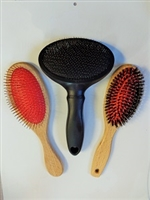 Special Starter Brush Set