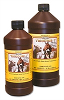 Triodine 16 oz. Spray Bottle