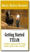 Getting Started with TTEAM by Marty McGee DVD