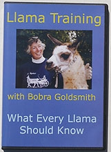 Llama Training with Bobra Goldsmith DVD - CURRENTLY UNAVAILABLE