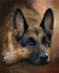 German Shepherd -  dog by Lois Stanfield