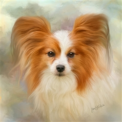Papillon - dog by Lois Stanfield