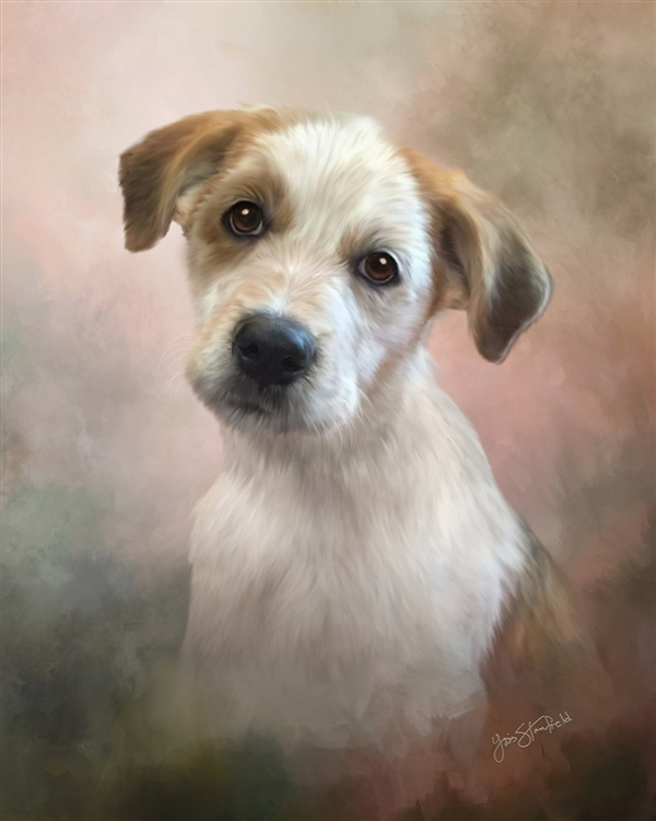 Terrier - dog by Lois Stanfield