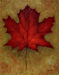Maple Leaf by Kyle Wood