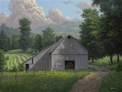 Barn Valley Summer by Kyle Wood
