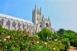 National Cathedral by Mitch Catanzaro