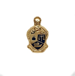 Enameled Recognition Pin
