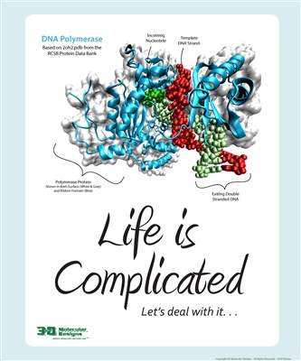 2020 Life Is Complicated Poster<sup>&#169;</sup>