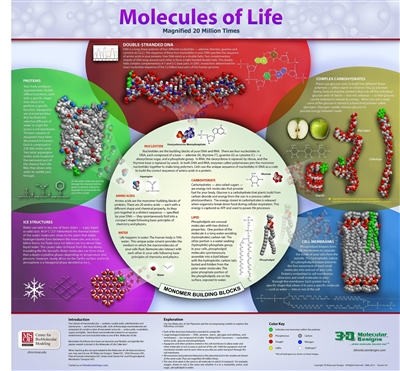 Molecules of Life Collection<sup>©</sup>