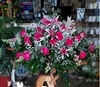 Casket Spray Long Stem Elegant Hot Pink Roses and Oriental Star Gazers Lilly's