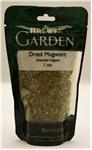 Dried Mugwort