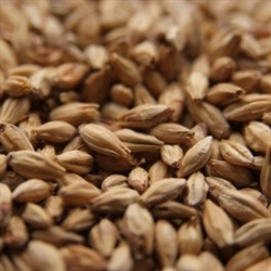 Abbey (Belgian Aromatic) Malt 1 lb