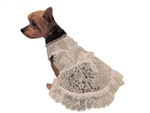 Puppy Dog White Chiffon Wedding Dress