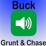 Buck Grunt Chase MP3 Audio/Sound (FREE)