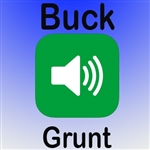 Buck Grunt MP3 Audio/Sound (FREE)