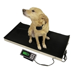 Extra Large Platform Laundry Scale - 700 lb capacity from SummitMeasurement.net