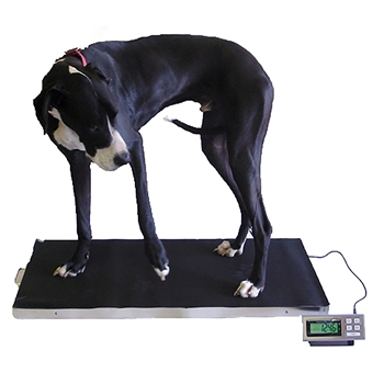 LVS 700 XL Vet Scale from SummitMeasurement.net