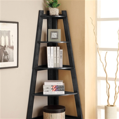 Contemporary Ladder Shelf Available in 3 Colors