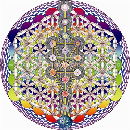 TREE OF LIFE, FLASHING RAINBOW SEED OF LIFE, FRUIT OF LIFE FLOWER OF LIFE-  SUBTLE ENERGY MANDALA