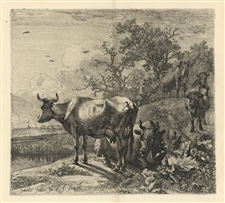"Paulus Potter original etching ""The Herdsman"""