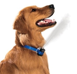 GentleSpray Anti-Bark Collar