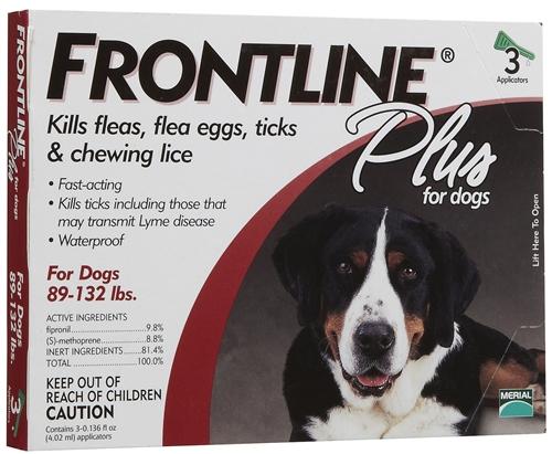 Lyme Disease In Dogs Spots