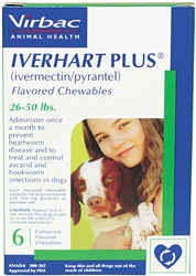 Iverhart Plus for Dogs 26-50 lbs, 6 Pack