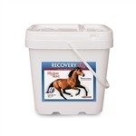 Recovery EQ Powder, 11 lbs (5 Kg, 200 Days)