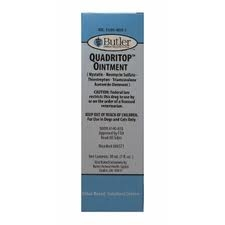 Quadritop Ointment, 240 ml