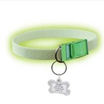 FurEver Brite Safety Collar For Dogs, Small
